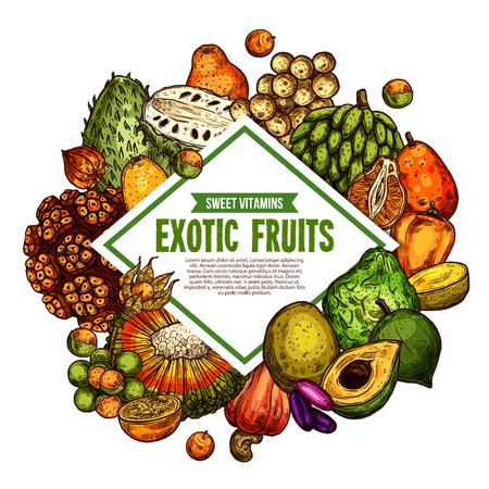 Exotic fruits sketch poster. Vector tropical fruit harvest of pandan, bergamot or mombin and jambolan, cashew nut, physalis and bam-balan or bambangan fruit and spanish apple with tangerine naranjilla Stock Vector - 115046410