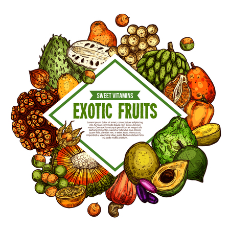Exotic fruits sketch poster. Vector tropical fruit harvest of pandan, bergamot or mombin and jambolan, cashew nut, physalis and bam-balan or bambangan fruit and spanish apple with tangerine naranjilla