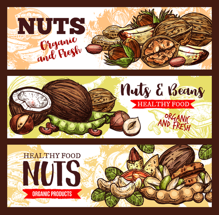 Vector sketch banners of nuts and beans