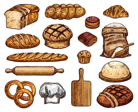 Bakery products and tools for work with dough. Wheat and rye bread, long baguette, sack of flour and cupcake, wooden cutting board with rolling pin and bagel, croissant and toast, cookie bun and bagel Illustration
