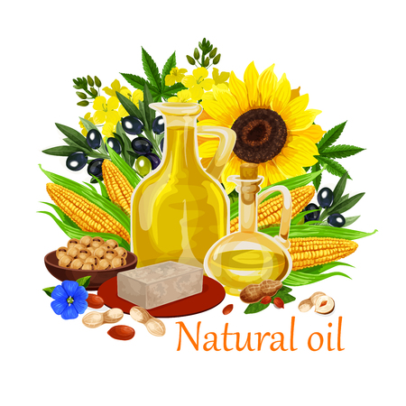 Natural oil made of sunflower seeds, olive and corn, peanuts and rapeseed, linseed. Vector types of extra virgin oils used in cosmetics, pharmaceuticals and soaps, for frying food and dressing salads. Illustration