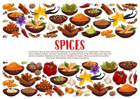 Duftende Gewürze und Gewürze aus Indien. Ingwer und Zimt, Lorbeer und Vanille, Sternanis und scharfe Chilischote. Pikantes Curry und Nuss-Meg, Knoblauch und Safran, Wasabi-Sauce-Vektor