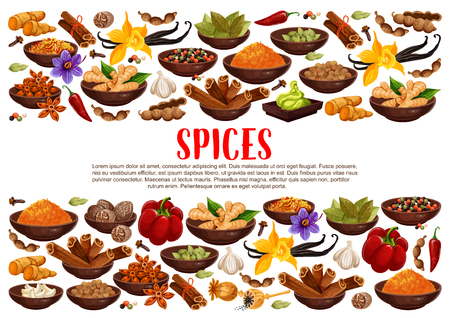 Fragrant spices and condiments from India. Ginger and cinnamon, bay leaves and vanilla, anise star and hot chilli pepper. Piquant curry and nut meg, garlic and saffron, wasabi sauce vector Standard-Bild - 114937148