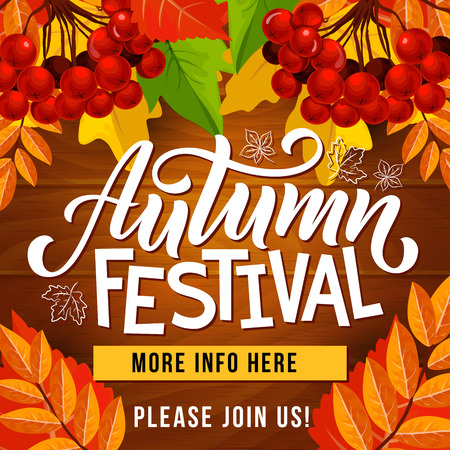 Autumn festival invitation poster with fallen leaf frame on wooden background. Orange maple foliage and yellow branch of rowan tree with red berry for fall season harvest celebration web banner design