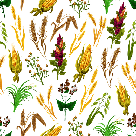 Grains and cereals seamless pattern. Vector background of corn, wheat and barley harvest or rye and oats millet for agriculture and food production or organic farm grown food Çizim