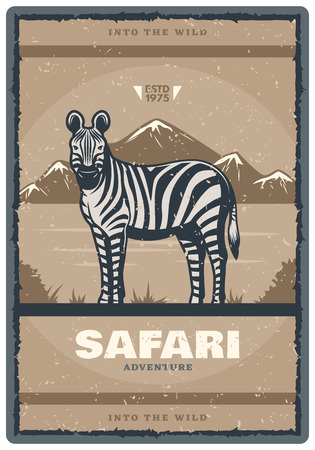 Safari hunt adventure vintage poster of zebra. Vector retro design of African wild animal in savanna zoo for hunter open season or wildlife park or nature hunt and trophy