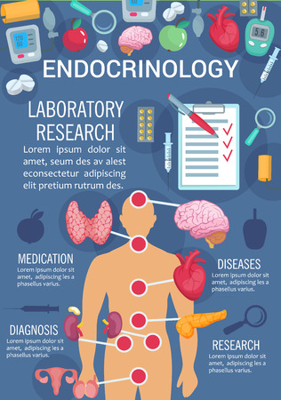 Endocrinology medicine poster of human endocrine system anatomy diagram. Thyroid gland, pancreas and hypothalamus, ovary, testis and thymus poster for research and diagnostic of endocrinology disease Illustration