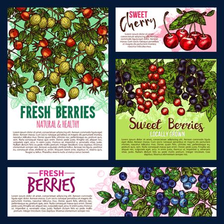Posters de jardin et de fruits sauvages Vecteurs