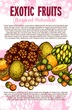 Exotic fruits sketch poster with fresh tropical berries of palm tree. Pandan, cherimoya and mamoncillo, membangan, mombin, longkong and naranjilla fruits for natural juice and fruity dessert design