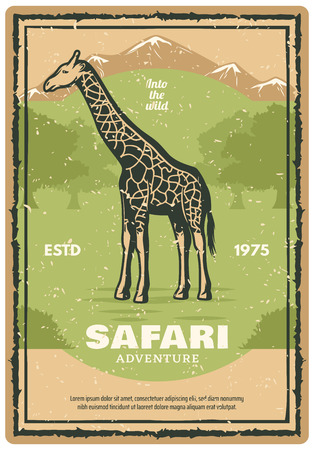 Safari adventure retro grunge banner with african giraffe animal. Wild mammal vintage poster with savanna tree nature landscape for safari tour and hunting sport themes design