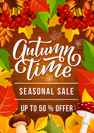 Autumn sale promo banner for fall season discount offer. Orange leaf frame border with maple foliage, forest mushroom and rowan fruit branch on wooden background for shop flyer design