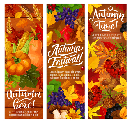 Autumn festival invitation banners for fall season harvest celebration. Orange fallen leaves on wooden background with pumpkin vegetable, fruit and forest mushroom, wheat and acorn flyers design