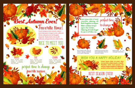 Autumn holiday wish on greeting card or poster. Vector fall harvest of pumpkin, rowan berry or mushroom and autumn foliage, oak acorn, maple leaf or pine and fir tree cone with seasonal quotes