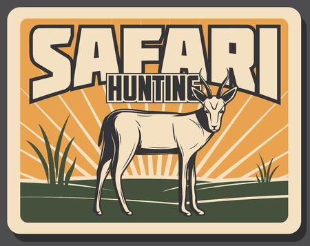 Bandiera dell'annata di caccia di safari con animale africano. Antilope selvaggia impala o poster retrò animale mammifero gazzella con paesaggio della savana africana su sfondo per tour safari e design sportivo di caccia Vettoriali
