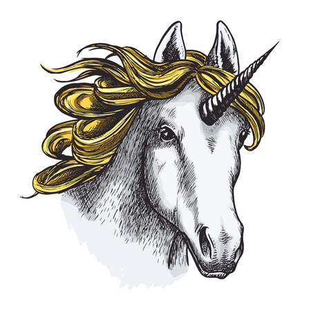 Unicorn horse sketch of magic animal with golden mane and spiraling horn. Head of legendary creature or fairy horse isolated vector for tattoo, t-shirt print or heraldry design Ilustração