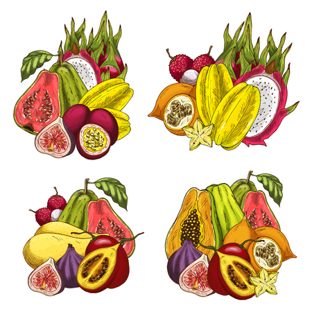 Exotic fruit bundle sketch of tropical farm product. Papaya, mango and fig, dragon fruit, carambola and guava, passion fruit, lychee and tamarillo isolated icon for food and juice drink menu design