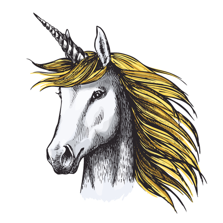 Unicorn with golden mane sketch of magic horse with spiraling horn on head. Fairy unicorn horse or medieval heraldic animal for tattoo, t-shirt print or heraldic badge design