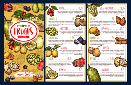 Fruit market price list template with exotic tropical berries. Pomelo, jackfruit and marula, tamarind, sweetsop and jaboticaba, jujube, ackee and salak, pepino, morindo, sapodilla and santol sketch