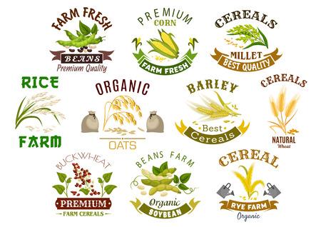 Icone dei prodotti a base di cereali. Simboli vettoriali di sacchetto di farina di frumento, spighe di segale e grano, semi di grano saraceno e miglio di avena o orzo e covone di riso. Pannocchia di granturco isolata di agricoltura e fagioli o piselli della leguminosa dell'azienda agricola
