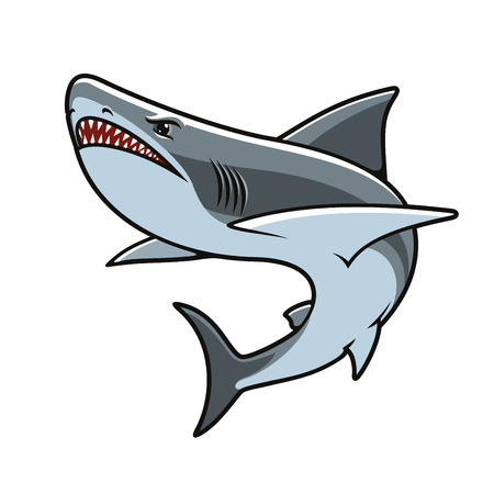 Shark cartoon mascot. Angry grey reef shark with open jaws showing dangerous sharp teeth. Marine animal for tattoo, sporting mascot or t-shirt print design
