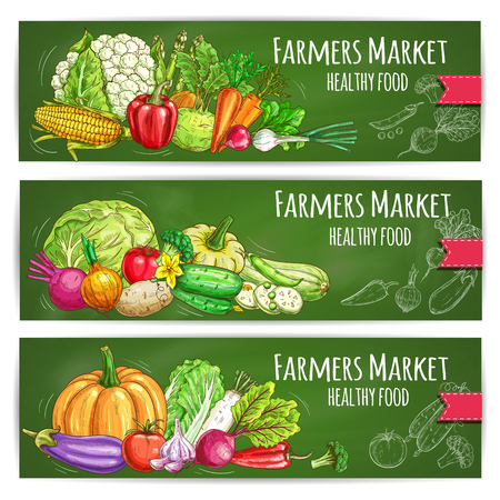 Vegetables sketch banners set of farmer market veggies. Vector corn and garlic, zucchini squash and beet, pumpkin and cauliflower, radish daikon, broccoli, bell and chili pepper, green onion leek, egg  イラスト・ベクター素材
