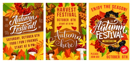 Autumn harvest festival banners. Fall season leaf and mushroom with viburnum and cone, acorn and blueberry. Seasonal holiday invitation or announcement vector, yellow orange leaves and rowan berry Illustration