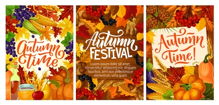 Autumn harvest festival posters with fall leaves. Maple syrup and honey, grapes and cranberry, acorn and pear, mushroom and corn, pumpkin or squash and currant, wheat spikes and viburnum vector Illustration