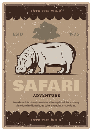 African safari vintage grunge banner for adventure tour or hunting sport template. Wild hippo animal and savannah tree landscape retro poster design, decorated with old scratched frame