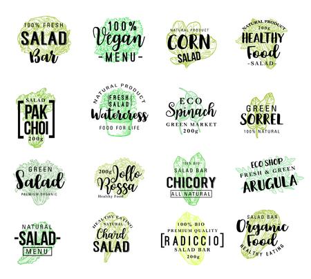 Sałatki i napisy warzywne sałaty dla projektu opakowania produktu lub menu wegańskiej restauracji. Wektor wegetariańska sałatka z cykorii i kukurydzy lub szpinak i rukola, farma radiccio i organiczne warzywa z cykorii