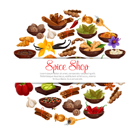 Spices and herbs in bowls poster of herbal seasonings. Vector tamarind, or vanilla and chili pepper, cinnamon and cardamom or cloves seeds and ginger, Indian curry or anise and turmeric with nutmeg