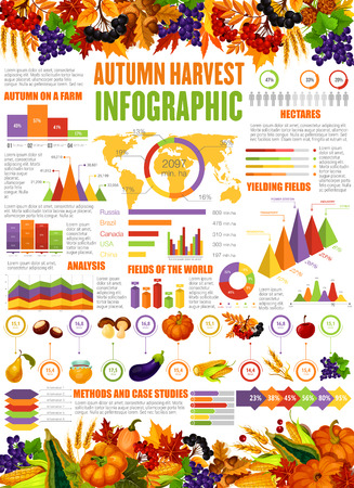 Autumn harvest infographic seasonal statistics poster. Vector diagrams for farm vegetables pumpkin, corn and eggplant, flowchart of honey and berry reap with wheat and grape fruits share percent
