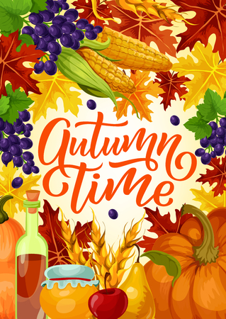 Autumn time poster for harvest fest or seasonal holiday celebration. Vector design of pumpkin and corn with fruits, grape berries and honey or wine in acorns and maple or oak leaf