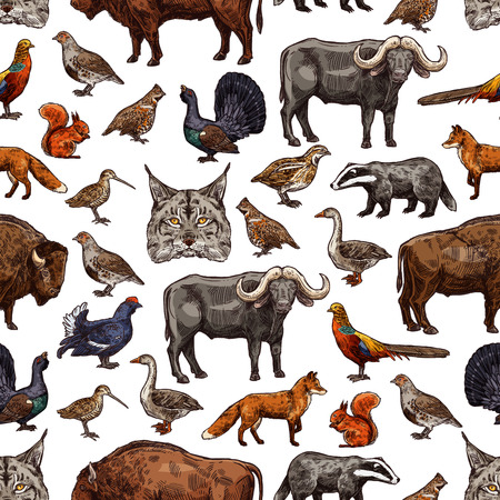 Animals sketch seamless pattern. Vector background of wild hunt and African safari animals and bird of buffalo, grouse or duck, lynx or woodcock and badger or fox and squirrel with pheasant