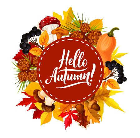 Hello Autumn poster with seasonal quote for fall holidays or sale festival. Vector design of autumn pumpkin, maple or rowan leaf, oak acorn and forest berry with mushroom