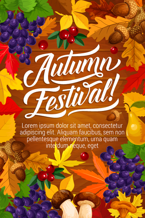 Autumn festival or fall season fest poster with harvest and foliage on wooden background. Vector berries, mushroom or grapes and acorns in maple, oak or rowan leaf design