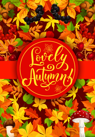 Autumn season poster for fall holidays or sale and festival. Vector design of autumn maple, rowan and maple leaf with oak acorn and forest berry or amanita mushroom Ilustração