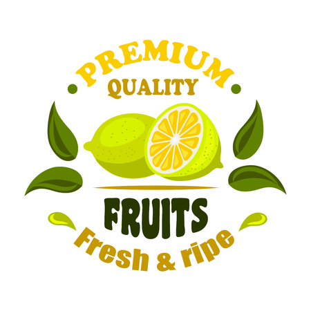 Fresh and ripe lemon fruits round badge decorated by green leaves and splashes of juice. Healthy organic fruits icon for greengrocery and farm market design Çizim