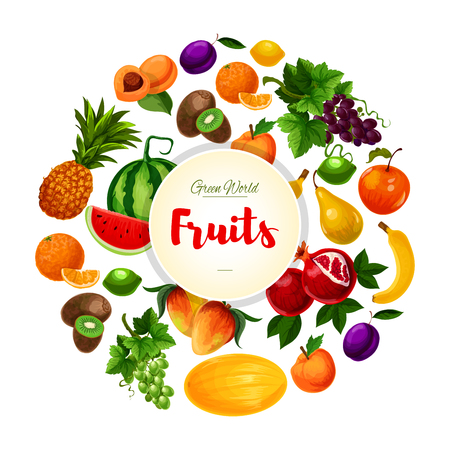 Fruits poster. Vector garden white and red grape and pomegranate, juicy watermelon and watermelon, exotic pineapple, kiwi and mango, banana, orange and citrus lemon or lime, peach or apricot and plum. Farm ripe fruits harvest Ilustração