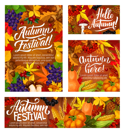 Autumn festival banners with fall leaves and harvest of vegetables. Wild grapes and cranberry, acorn and pear, mushroom and corn, pumpkin or squash and black currant, wheat spikes and viburnum vector