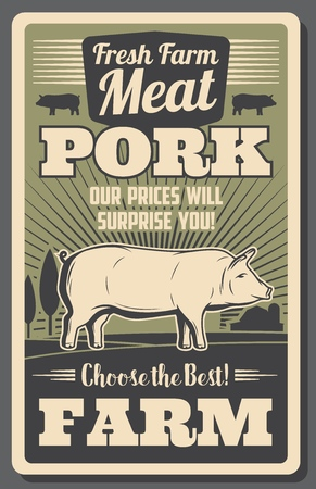 Meat farm poster with pork. Fat pig grown on ranch, organic butchery product vintage brochure. Natural food of rural animal origin retro leaflet with livestock animal with hooves vector Foto de archivo - 110237498