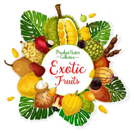 Exotische tropische vruchten poster. Durian, pomelo en kweepeer, cherimoya, tamarinde en appel cashew, pepino, jabuticaba en gandaria, ackee, cocona en salak met palmblad