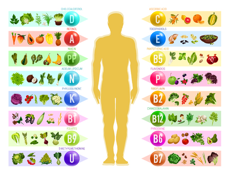 Vitamin and mineral in food. Human silhouette with chart of vegetable, fruit and nut, cereal and berry, organized by content of vitamin. Health nutrition and natural diet supplement 矢量图像