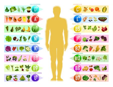 Witaminy i minerały w żywności. Ludzka sylwetka z wykresem warzyw, owoców i orzechów, zbóż i jagód, uporządkowanych według zawartości witaminy. Zdrowe odżywianie i naturalny suplement diety