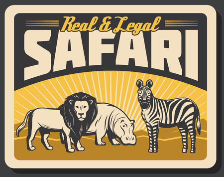 Safari hunting vintage banner, savannah wild animals. Lion, hippo and zebra old grunge poster, decorated with retro sun rays. Hunter sport club camp or adventure tour design