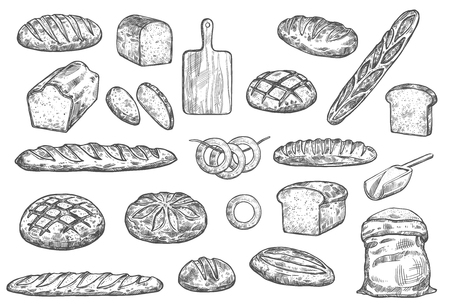 Bread sketch and baker items. Vector isolated flour bag with dough, wheat bread bagel or toast loaf and croissant or rye bun and ciabatta baguette on cutting board