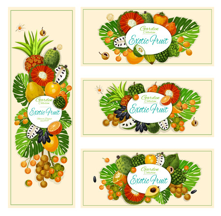 Exotic tropical fruits, farm market banners. Vector design of pandan fruit, longkong or soursop apple and physalis, bergamot or mombin and lucuma with tangerine or naranjilla and jambolan