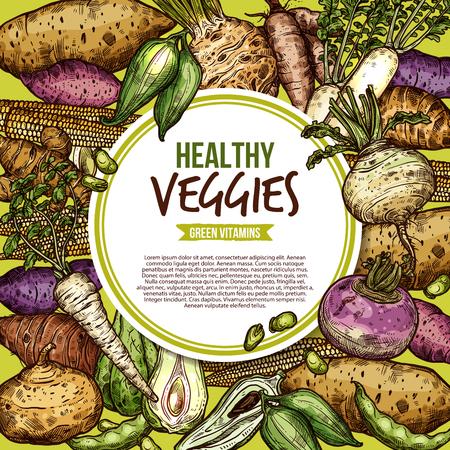 野菜や農場の野菜のスケッチ、エゲタリアンの健康的な食べ物。ベクター天然ビーガン有機ジャガイモ、大根またはカブとマメ科パン豆ジカマとカサラ塊茎