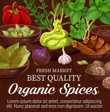 Organic spices, herbs and vegetables on wooden background. Rosemary, basil and thyme, cinnamon, nutmeg and onion, cardamom, clove and paprika, garlic, bay leaf and wasabi. Vector illustration