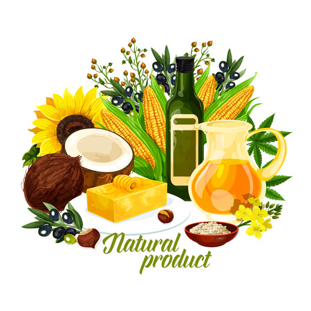 Natural oil products, organic plants. Golden corn and coconut, sunflower and butter, colza oil and rapeseed flowers, extra virgin black and green olives and peanut, flax linseed vector Illustration