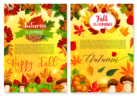 Autumn is coming seasonal fall greeting card or poster of falling leaves, pumpkin and forest mushroom or rowan berry harvest. Happy Fall maple leaf, autumn oak acorn or pine and fir cone vector design